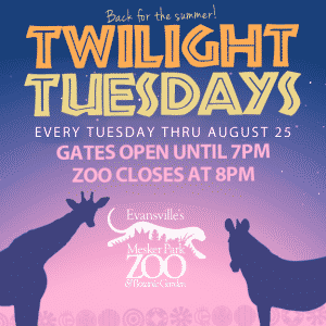 Twilight Tuesdays 2015